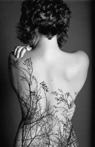 Nature's Silhouette Back Tattoo