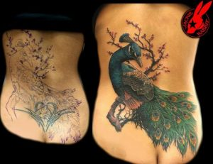 Gorgeous Peacock Cover Up Tattoo
