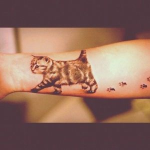 Black and White Furry Kitten with Footsteps Forearm Tattoo