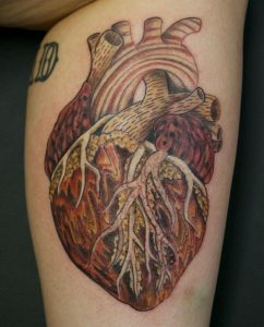 Outstanding Anatomical Heart Tattoo