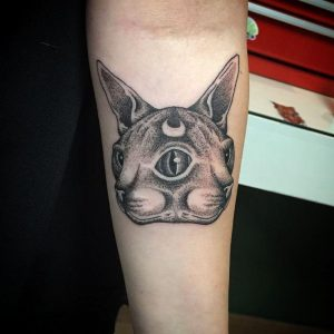 Two-Faced Sphynx Cat Forearm Tattoo